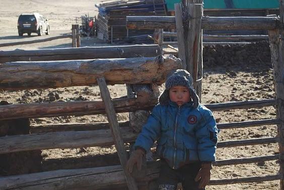 Life on Mongolian Steppe