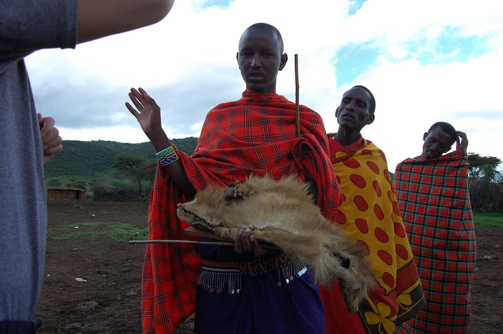 Maasai Hat made from real lion skin