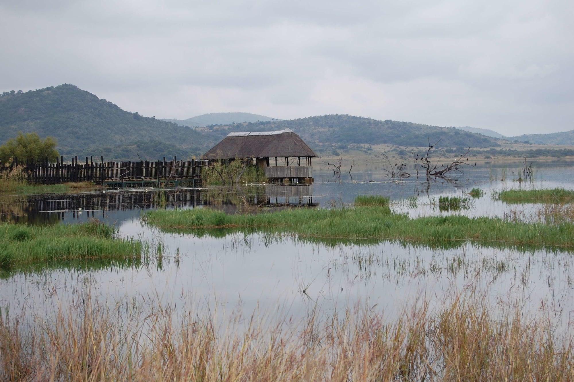 bird hide Mankwe dam pilansberg national park