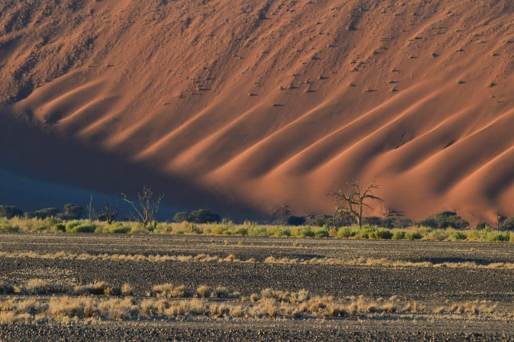 Sand formations at Sossusvlei National Park