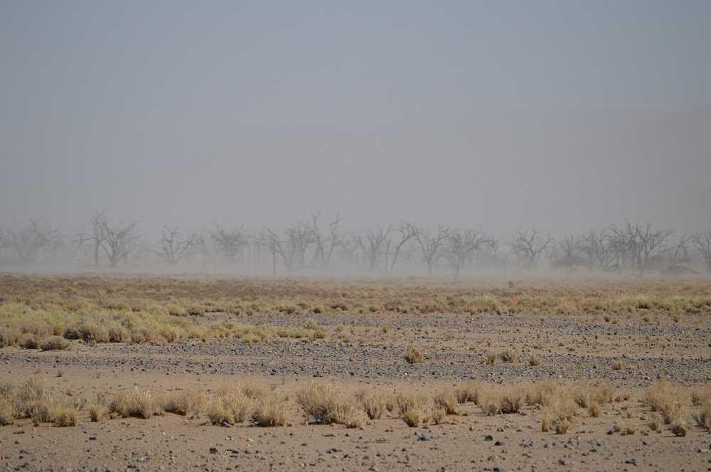 sandstorm sossusvlei national park