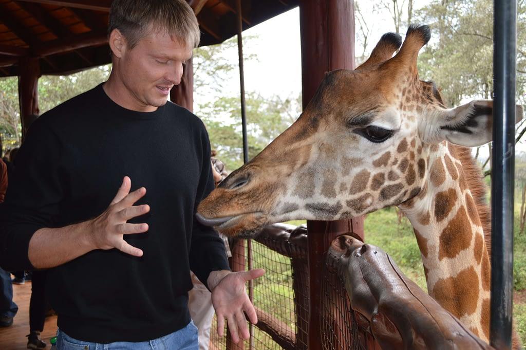 Giraffe Center Nairobi Best things to do