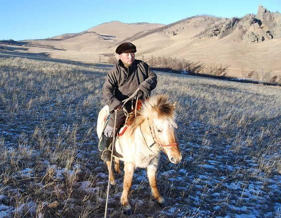 Real Mongolian Cowboy