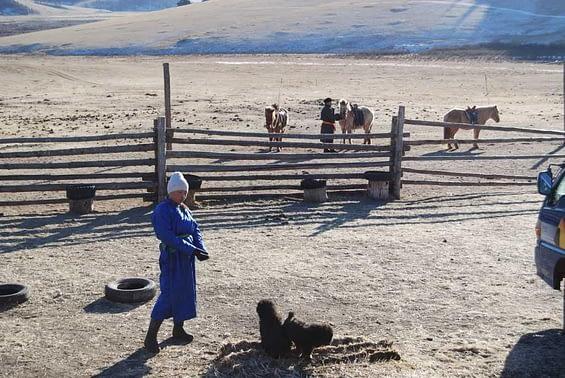 Nomadic Life Mongolian Steppe