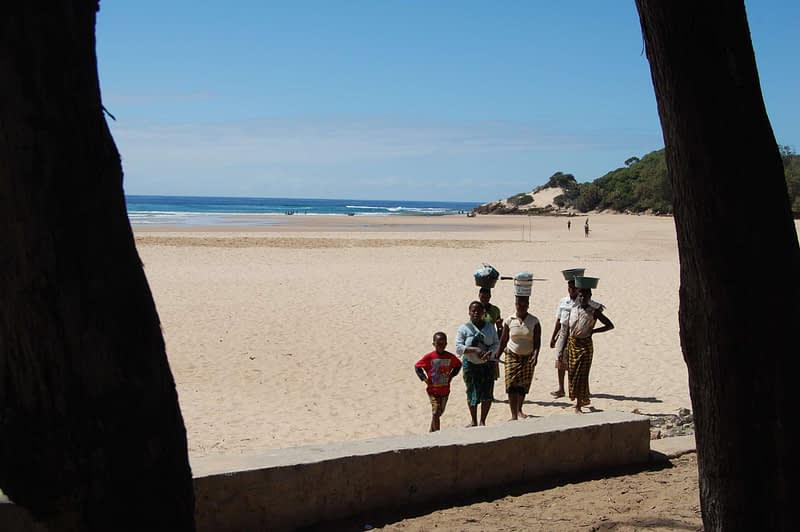 Harvesting shellfish at Tofo Beach, Mozambique