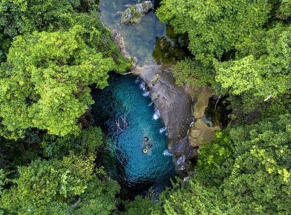 Vanuatu Eco-tourism Forest Adventures